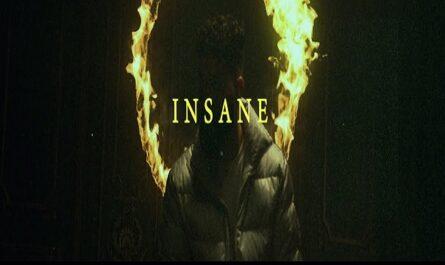Ap Dhillon & Gurinder Gill - Insane Lyrics